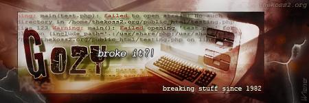 gozy_broke_siggy.jpg